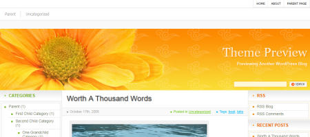 orange flower wordpress theme